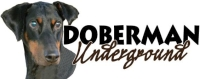Doberman Underground
